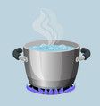 boiling water in aluminium pot on gas flame vector image