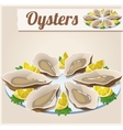 Oysters Detailed Icon vector image