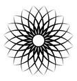 flower pattern petal flower circular openwork vector image