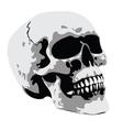 Horror skull vector image