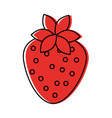 delicious strawberry fruit harvest organic vector image