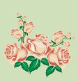 tea roses in cartoon style vector image
