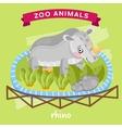 Zoo Animal Rhino vector image