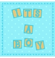 Its a boy card with cubs vector image