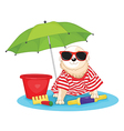 Dog with sunglasses vector image
