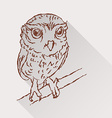 Drawing of little owl with long shadow vector image