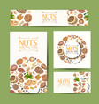 set of cards with nuts and seeds vector image