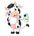 cow holding milk bottle vector image