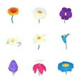 Different flowers icons set cartoon style vector image