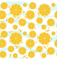 Oranges slices seamless pattern splash vector image