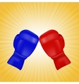 Red and Blue Boxing Gloves vector image