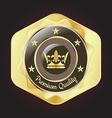 Golden Premium Quality Badge vector image