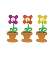 Isolated collection of cute flowers in pot vector image