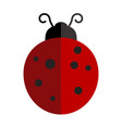 ladybird on white background vector image