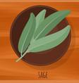 sage flat design icon vector image