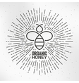 Bee logo with sunburst paper background vector image