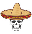 sombrero mexican hat and skull vector image vector image