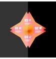 Vintage retro geometric infographic banner vector image