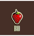 vintage with a red strawberry vector image