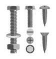 bolts and nuts with different screw heads types vector image