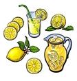 lemonade with lemon in a transparent jug vector image