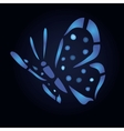 Blue butterfly on black background vector image vector image