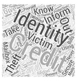 identity theft protection information Word Cloud vector image