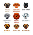 cute dog icons set iii vector image