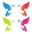 phoenix color vector image