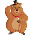marmot with a cane vector image
