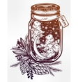 Wish jar with night sky moon and stars vector image