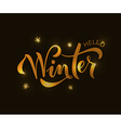 Hand sketched Winter lettering typography vector image