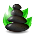 Spa Stones Background with Green Leaves vector image