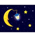 moon flash vector image vector image