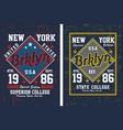 vintage brooklyn new york vector image