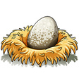 Nest with an egg vector image