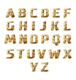 golden 3D alphabet vector image