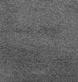 Gray Leather Texture vector image