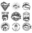 Set of the fresh carp labels emblems and design vector image