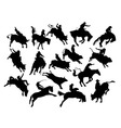 Rodeo Activity and Action Silhouettes vector image