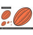 cocoa bean line icon vector image