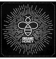 bee logo with sunburst on black background vector image