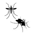 silhouette of mosquito vector image