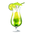 Green coctail vector image