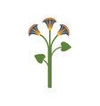 lotus flower symbol of traditional egyptian vector image