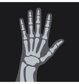 X Rays Style Human Hand vector image vector image