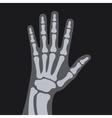 X Rays Style Human Hand vector image
