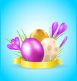 eggs and violet crocuses vector image vector image