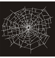 spider web or broken glass vector image