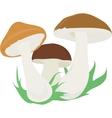 three mushroom vector image